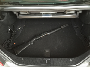 Should You Bother With a Trunk Gun?